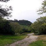 Il Faro del Parco del Cardeto