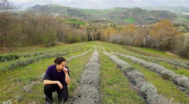 Chiara Russo Agriturismo Amargi Smerillo
