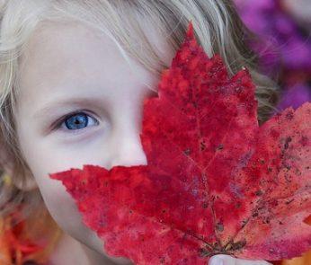 eventi-bambini-marche-autunno-2018