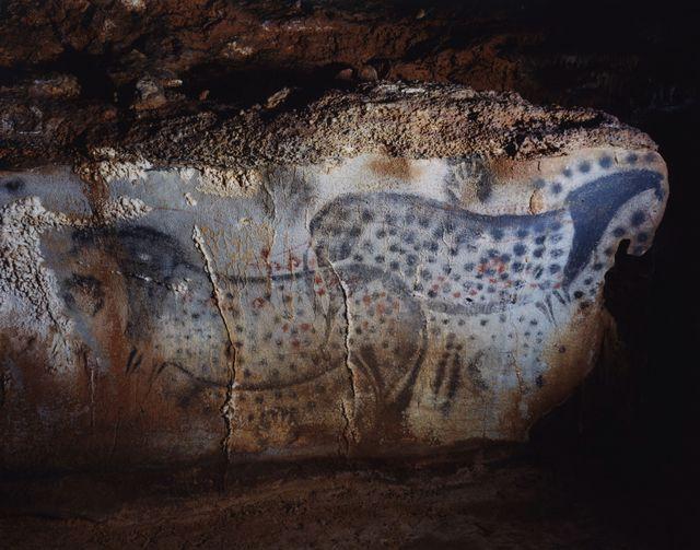 Domingo Milella: Caverna di Pech-Merle Occitania