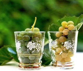 Feste del vino e dell'uva 2019 nelle Marche
