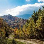 Foliage Marche: Riserva Torricchio a Pievetorina
