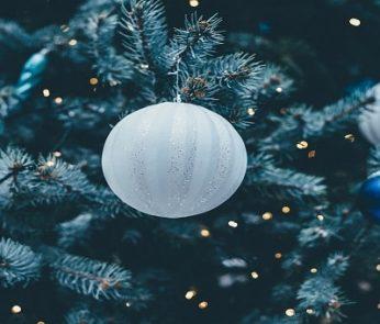 Eventi Natale 2019 nelle Marche, albero di Natale