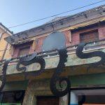 Street Art nelle Marche, Mondolfo Galleria senza soffitto: piovra