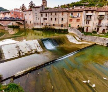 Tartufi nelle Marche: Sant'Angelo in Vado